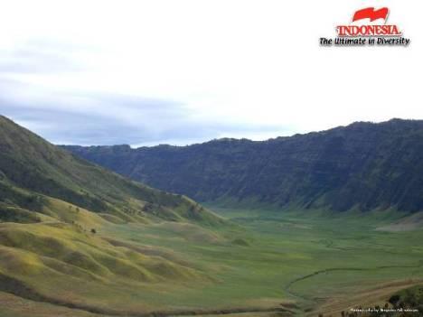 Pemandangan lembah gunung Bromo